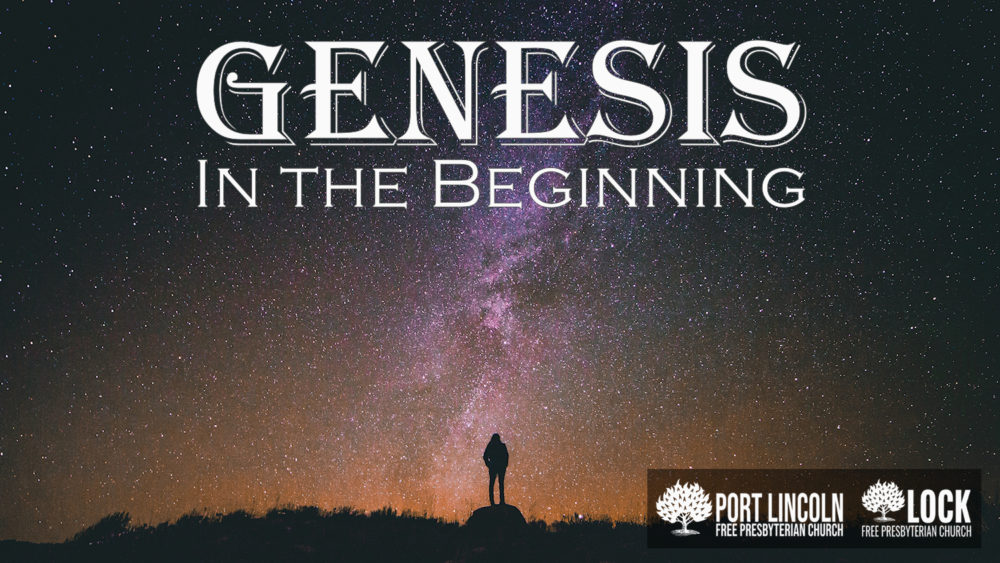 Genesis: The Beginnings
